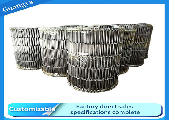 25mm Pitch 316 Stainless Steel Food Conveyor Chain
